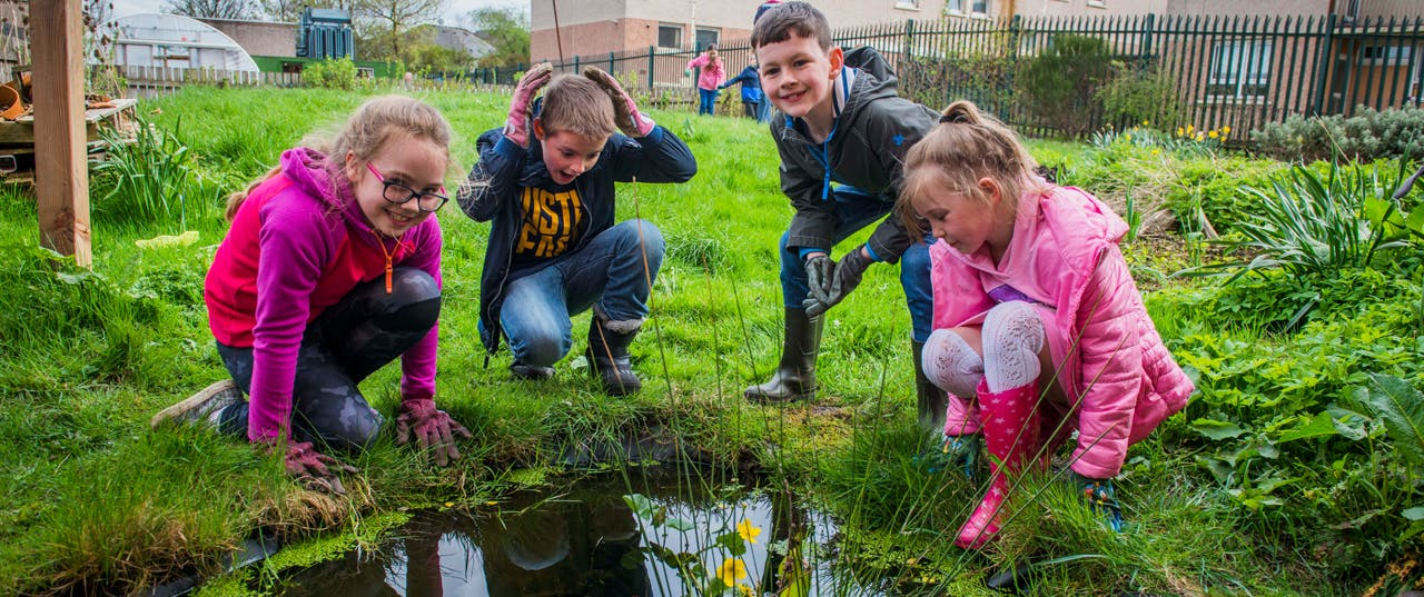 Shettleston Community Growing Project